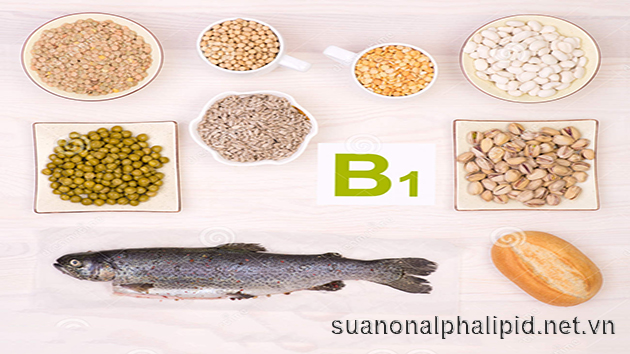 Cung cấp vitamin B1 để bảo vệ tim mạch và hệ thần kinh
