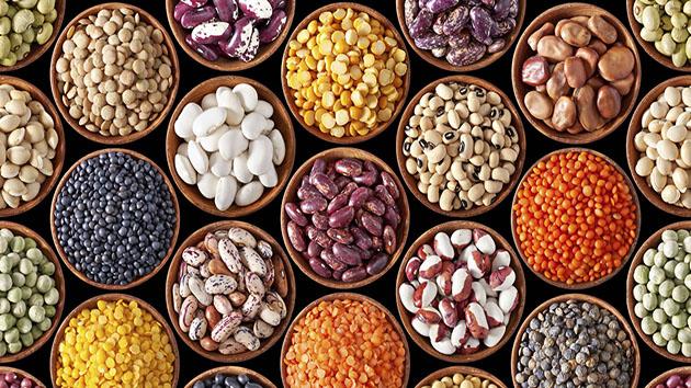 Các loại đậu chứa nhiều chất xơ tốt cho quá trình giảm cân và cholesterol xấu