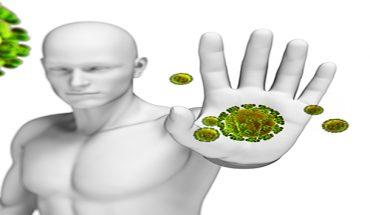 Hệ thống miễn dịch của cơ thể giúp phòng chống và tiêu diệt các virus vi khuẩn gây bệnh