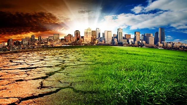 Tác động xấu từ ô nhiễm môi trường khiến hệ miễn dịch cơ thể xáo trộn