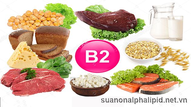 Vitamin B2 giúp lấy năng lượng từ thức ăn cung cấp cho cơ thể