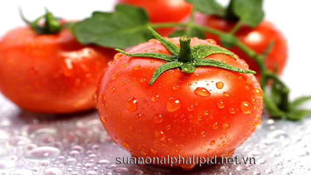 cà chua chứa lycopene là một hợp chất chống oxy hóa mạnh mẽ, cà chua nấu súp, nước sốt hoặc ketchups giảm nguy cơ ung thư tuyến tiền liệt và ung thư khác của đường tiêu hóa