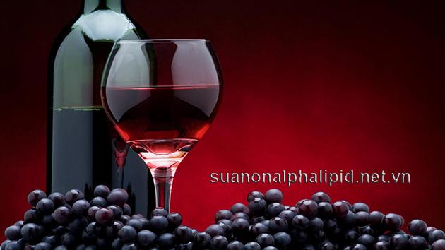 Rượu vang đỏ chứa bioflavonoids, phenol, chất resveratrol, và tannin, trong đó có chất chống oxy hóa và các thuộc tính anticlotting; làm tăngcholesterol tốt