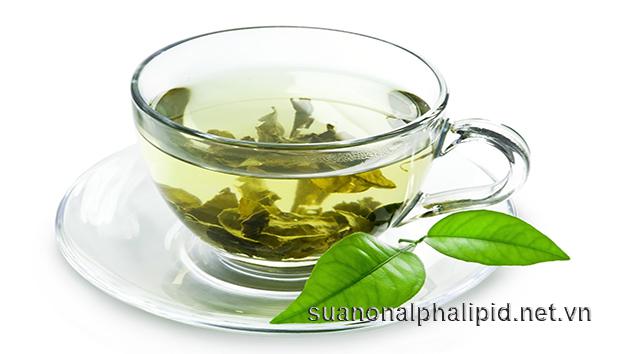 Những chất chống oxy hoá chỉ được tìm thấy trong trà xanh, giúp tiêu diệt các gốc tự do và làm chậm quá trình lão hóa