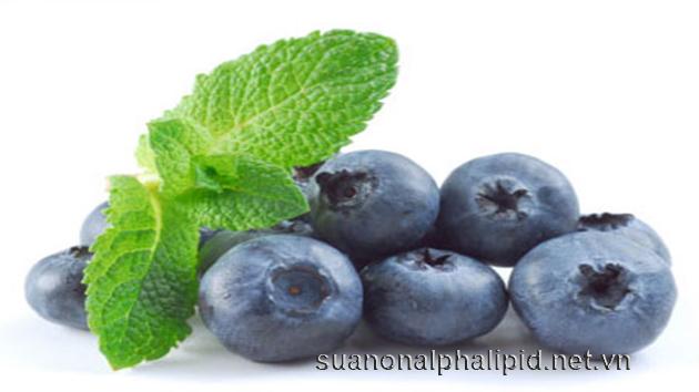 Quả việt quất có chứa chất chống oxy hóa hơn bất kỳ trái cây hoặc rau khác.
