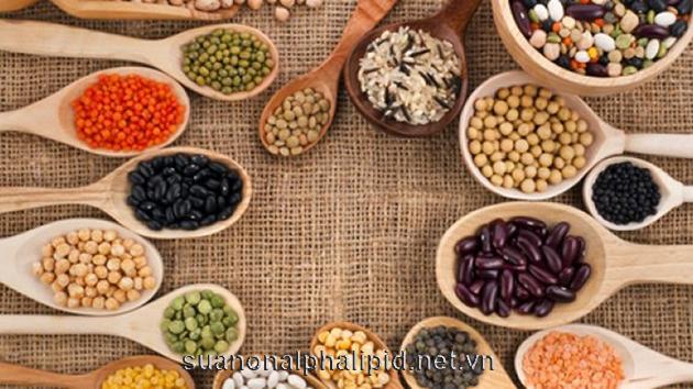 đậu ngoài cung cấp nguồn chất xơ, protein, sắt