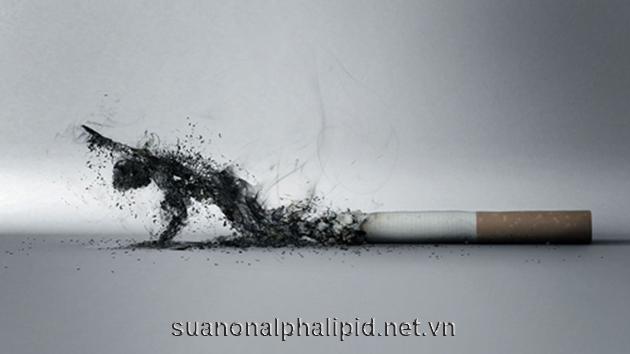 Hút thuốc lá là nguyên nhân gây ra hầu hết các bệnh ung thư, người hút thuốc thường xuyên có nguy cơ mắc bệnh ung thư dạ dàygấp hai lần so với người không hút thuốc