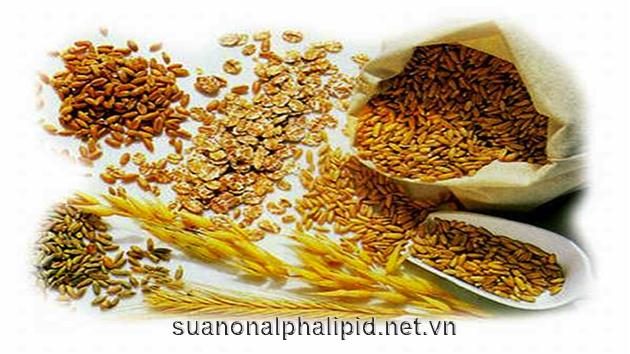 yến mạch, lúa mạch,…đây là những loại có chỉ số glycemic thấp nhất của ngũ cốc.Thực phẩm có chỉ số glycemic thấp giúp ổn định được đường huyết