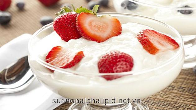 probiotics có nhiều trong sữa chua