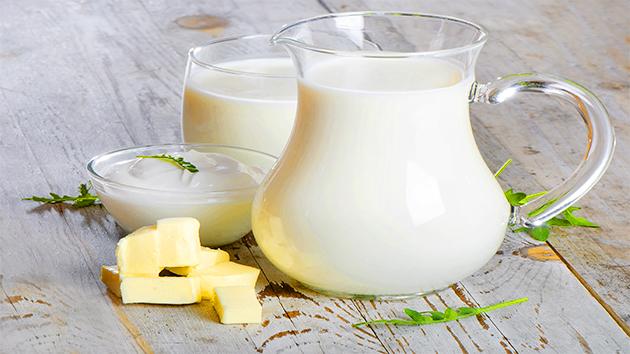 Sữa non của bò là nguồn dinh dưỡng vô giá thích hợp với cơ thể người