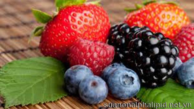 Quả việt quốc có chứa rất nhiều hợp chất dinh dưỡng quý như carbonhydrate, chất xơ, vitamin A có tác dụng chống oxy hóa làm giảm nguy cơ bệnh tim và ung thư và còn có tác dụng chống viêm