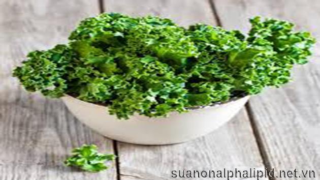 Cải xoănKale nó cung cấp đầy đủ nhu cầu vitamin A và K trong ngày, nó còn chứa glucosinolate giúp trung hòa các chất gây ung thư